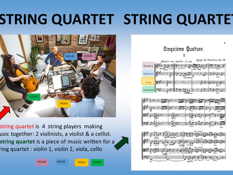 So What's a String Quartet Anyway?