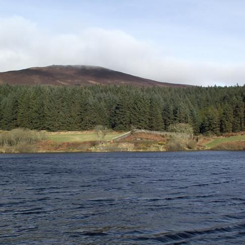 Cringle Reservoir