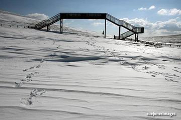 March Snow 2013