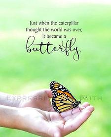 Butterfly5_edited.jpg