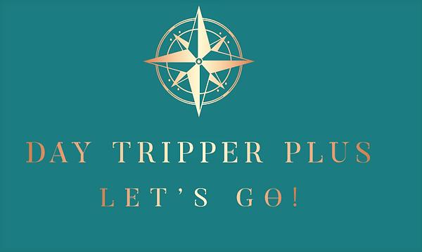 Day Tripper logo Aqua3.png