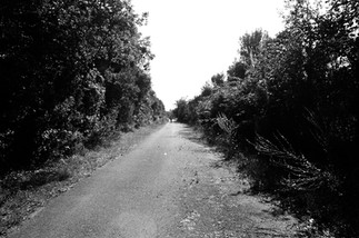 The Route N°2