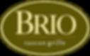 brio-3-color-logo.png