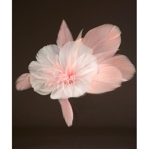 Pink Designer Flower With Pink Pedals And Pink Stamen