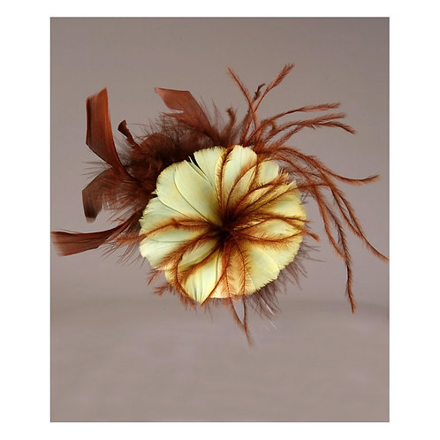 Brown Flower Feather With Yellow Pedals