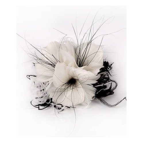 White Flower Feather With Black Ostrich