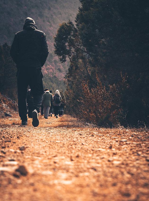people walking in a trail