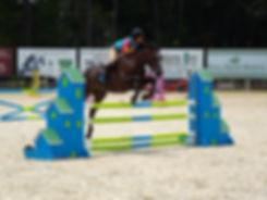 Ever Horse Farm   Jumper program Ocala