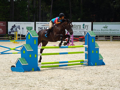 Ever Horse Farm | Jumper program Ocala