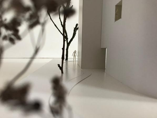 Photo 29-03-2018, 14 17 22.jpg