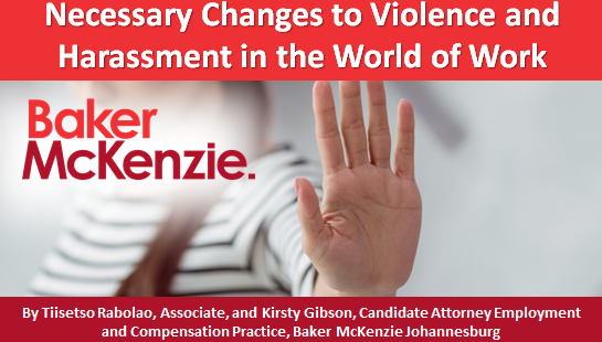 Necessary Changes to Violence and Harassment in the World of Work