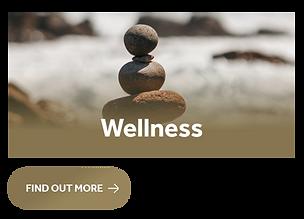 Wellness Box.png