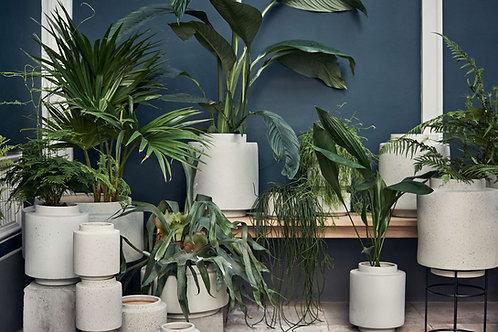 Botanique plant pot XS