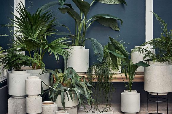 Botanique plant pot XS white