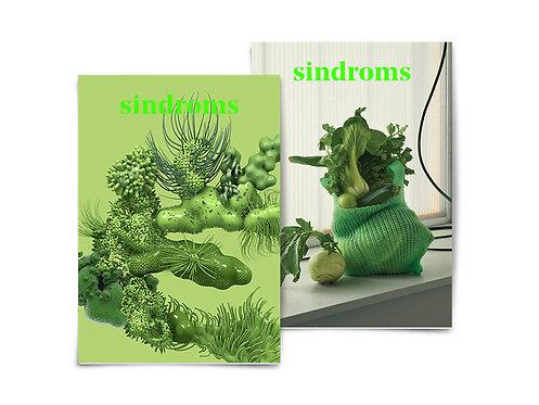 sindroms- Issue #5: Evergreen Sindrom