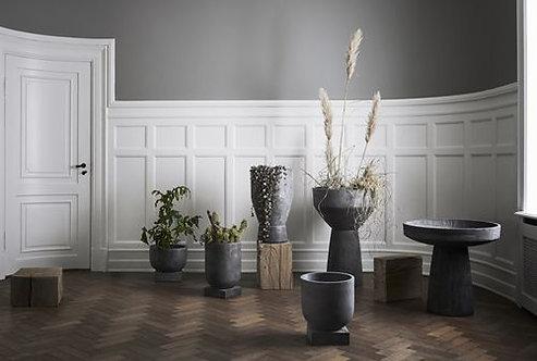 Podium plant