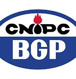 CNPC-BGP.png