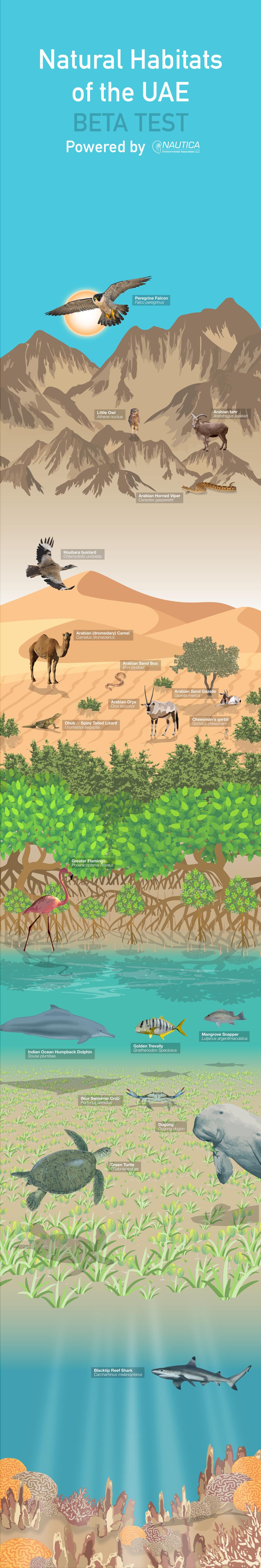 Natural Habitats of the UAE