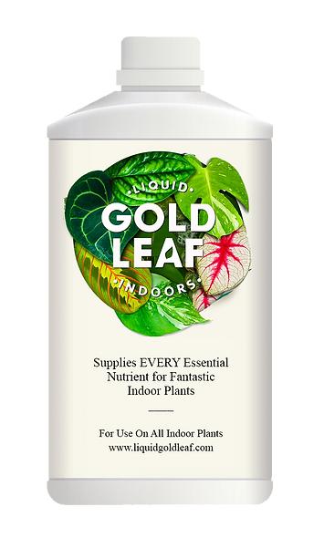 liquid-gold-leaf-bottle-1.png