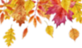 fall leaf background.png