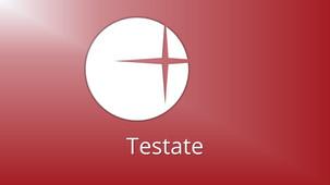 Testate5.jpg