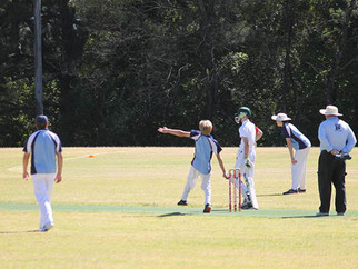 Records made in Wiburd Shield Cricket