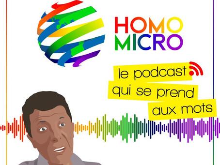 Entrevue radio avec Brahim Naït-Balk pour Homomicro