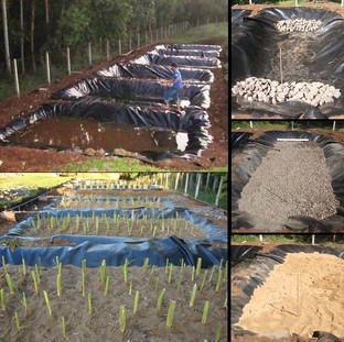 Vala para plantações diversas