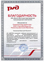 Благодарность Романов Д.Ю-001.jpg