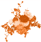 Bloemen-oranje-RGB.png