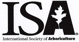 ISA International Society of Arboriculture - Alley Tree - Sonora, CA