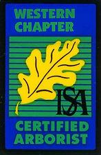 ISA Certified Arborist - Alley Tree Sonora, CA