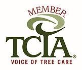 TCIA Member Alley Tree and Landscape Sonora, CA Tuolumne County
