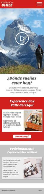 Experiencia Chile MVP_Página_1.png