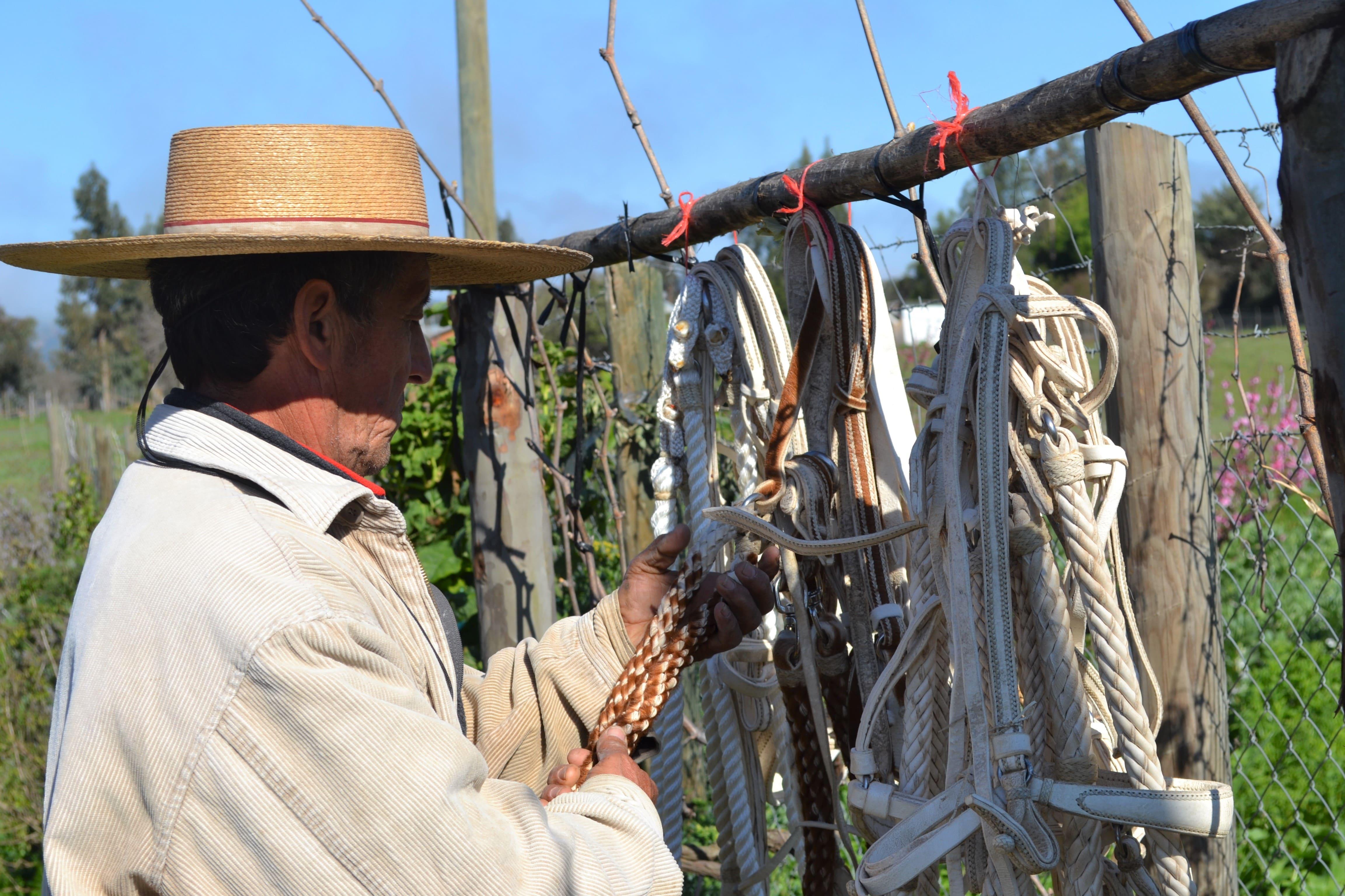 talabartero-pumanque