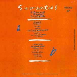seventiesback8.jpg