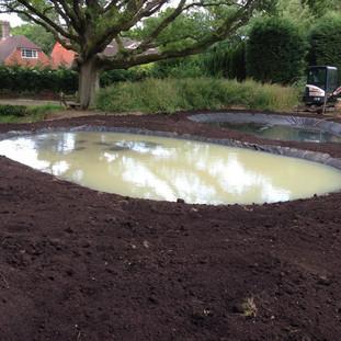 Alun Gedrych Ltd - Freshly installed pond