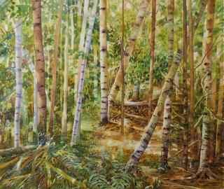 Barb McGuey- Birch Forest