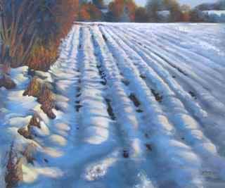 Barb McGuey- Winter Furrows