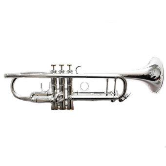 vinateg silver trumpet