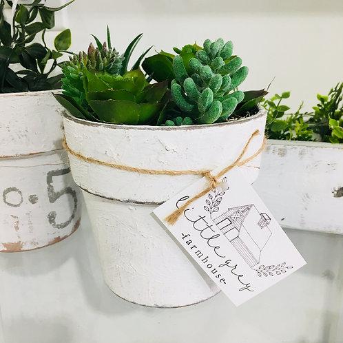 Terracotta White Wash Plant Pot