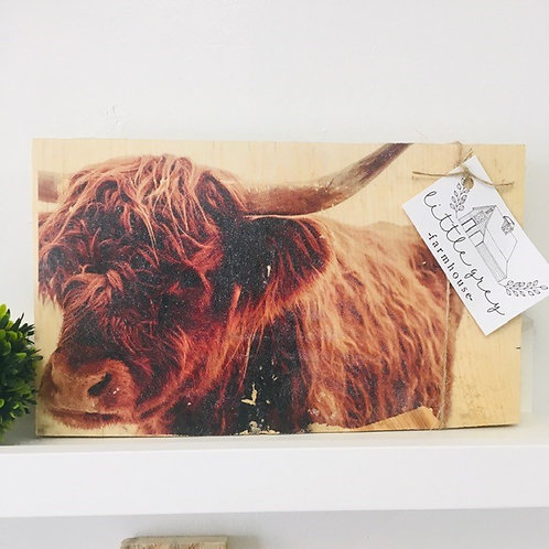 Cow Photo Transfer on Barnwood