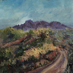Road to Superstition Mtn.
