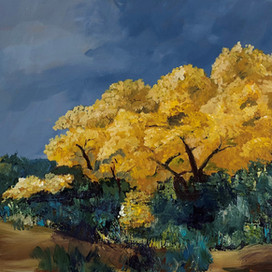 Cottonwood in Fall Color.jpg