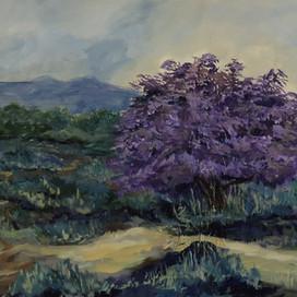 Ironwood Tree in Bloom.jpg