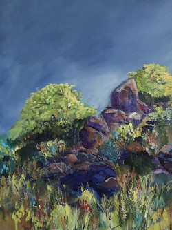 Boulders In Springtime I