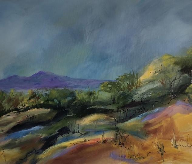 Desert Scape VII.jpg