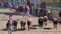 Feira de Vila Franca pode ter oito largadas