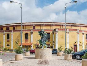 Assembleia exorta Câmara a instalar Museu da Tauromaquia