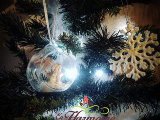 "Jeu ""joie de Noël 2016"""